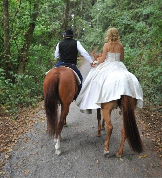 House of Vienna Wedding dresses Langley BC Wedding gowns Prince George BC Grad Dresses Bridesmaid dresses Tuxedo rentals